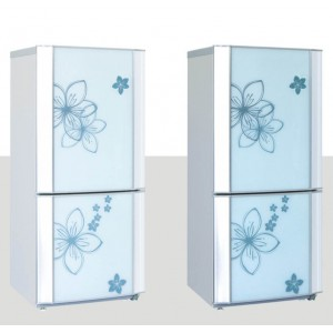 Combine fridge freezer BCD-218JCC